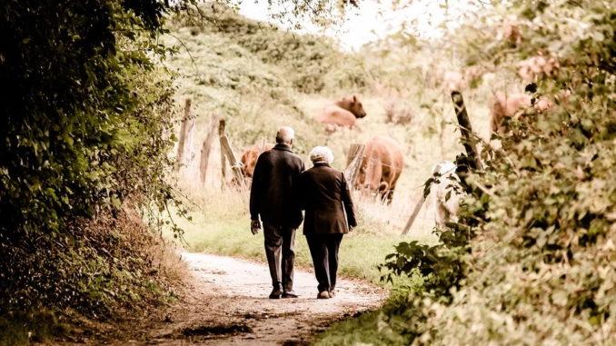 Wandern – Bewegung und frische Luft vereint